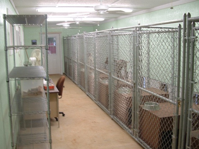 Kennel Indoor